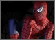 Новый Человек-паук Мото